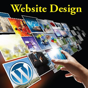 Website Design and Hosting in One Location
